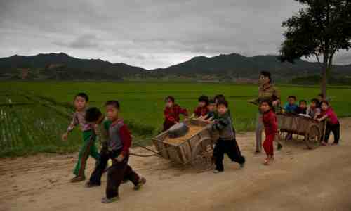 children_pulling_cart_NK