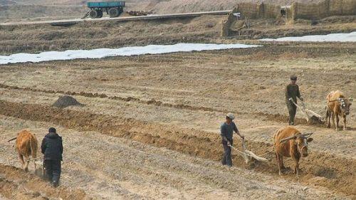FIDA-farmers-in-NK